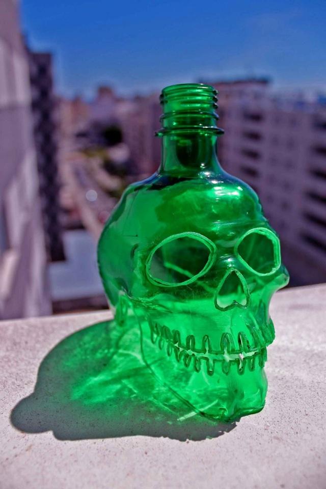 Plastic skulls franco reyes 15