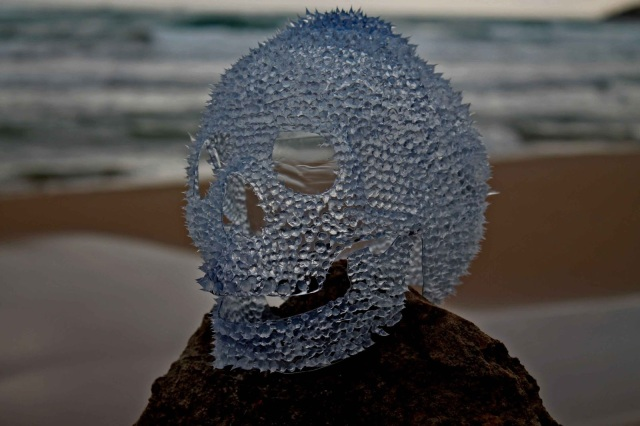 Plastic skulls franco reyes 5