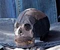 Plastic skulls franco reyes