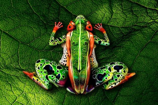 Body Art Illusion johannes stoetter 13