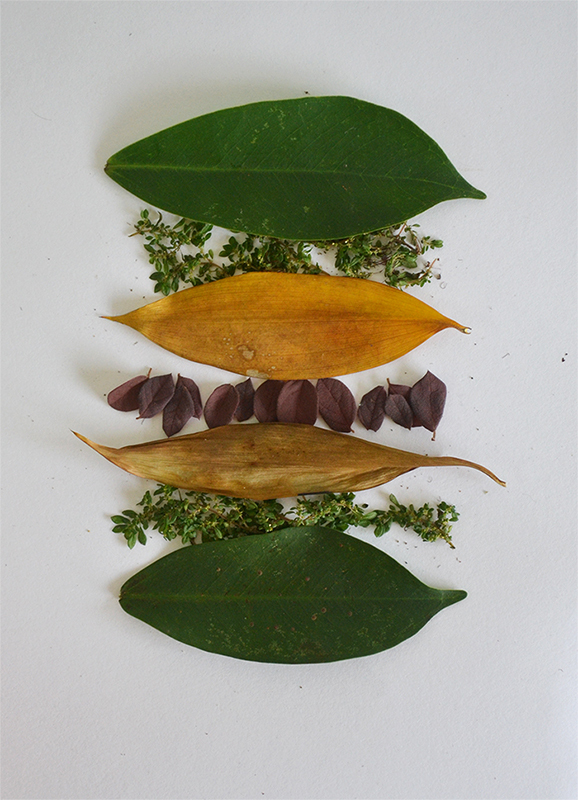 Leaf art Tang Chiew Ling. 9