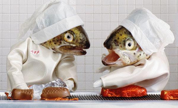 Fish Sculptures Anne Catherine Becker Echivard
