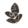 Lorenzo Manuel Durán leaf cutting art 3