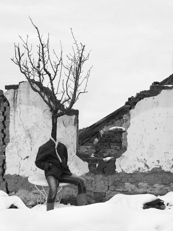 tree people Marko Prelic 10