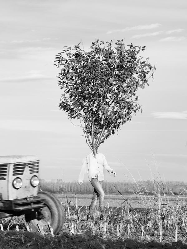 tree people Marko Prelic 2