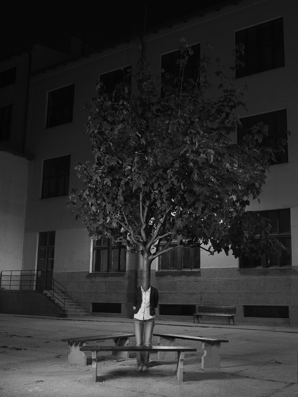 tree people Marko Prelic 5