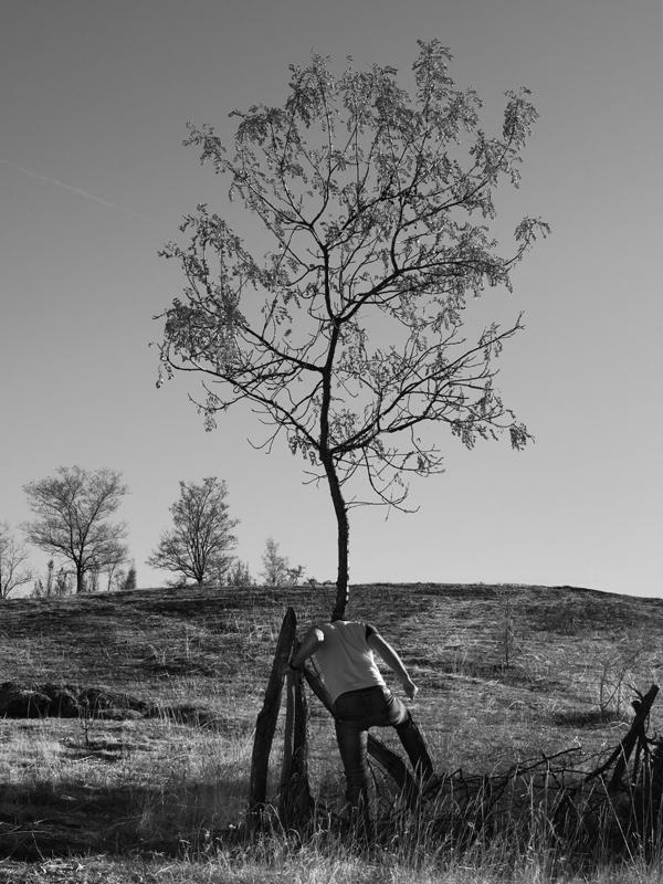 tree people Marko Prelic 7