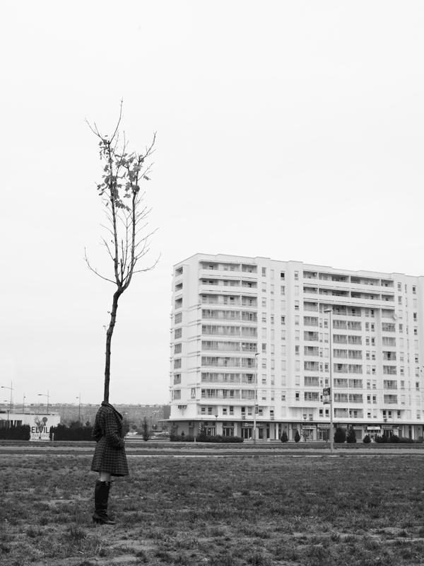 tree people Marko Prelic