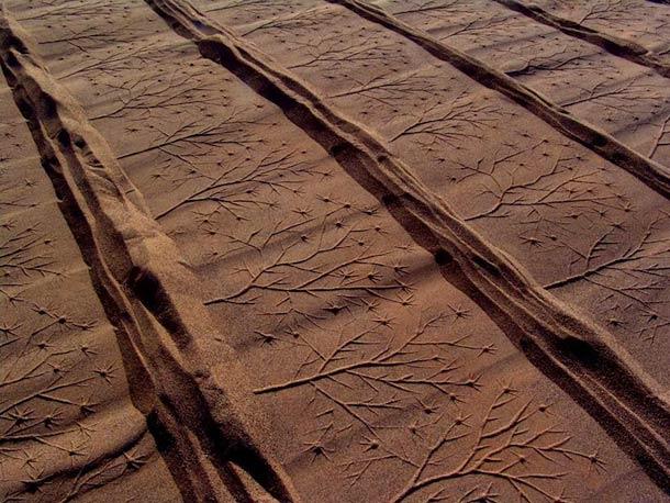 Ahmad Nadalian Sand Print 13