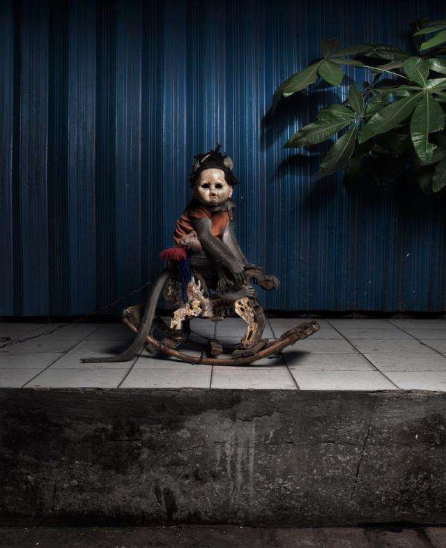 haunting monkeys with doll heads Pertu Saksa 10