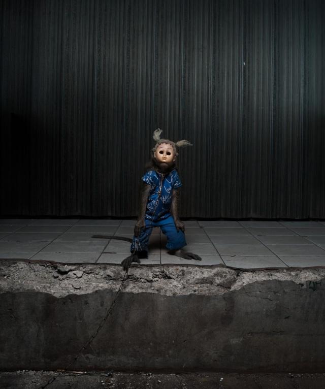 haunting monkeys with doll heads Pertu Saksa 17