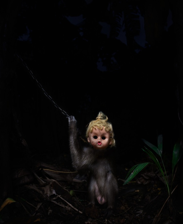 haunting monkeys with doll heads Pertu Saksa 7
