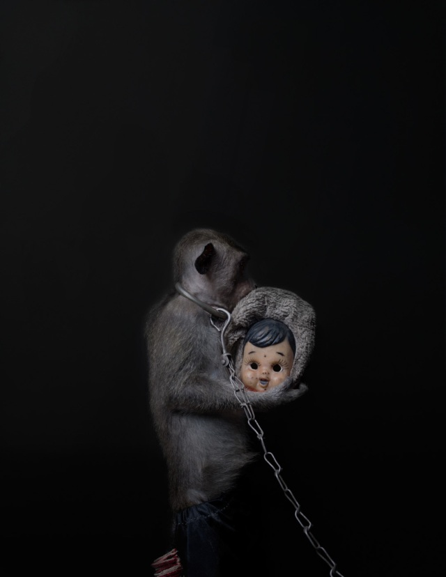 haunting monkeys with doll heads Pertu Saksa 8