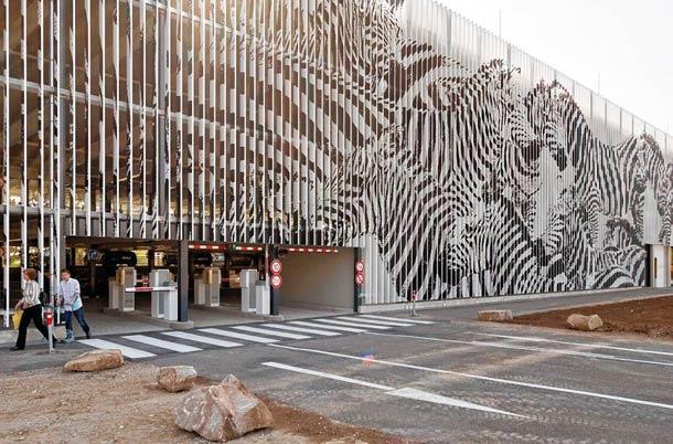 zebrating street art Anamorphic 11