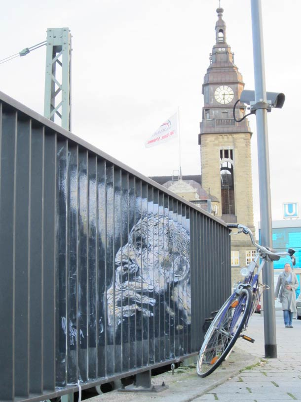 zebrating street art Anamorphic 13
