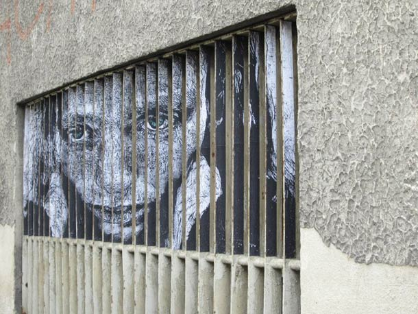 zebrating street art Anamorphic 16