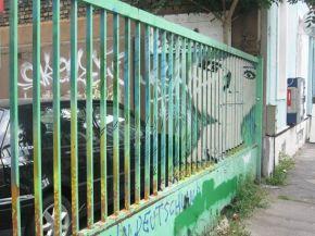 zebrating street art Anamorphic 2