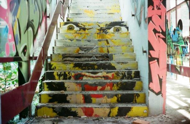 zebrating street art Anamorphic 20
