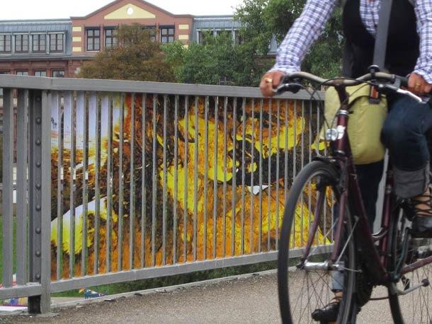 zebrating street art Anamorphic 21
