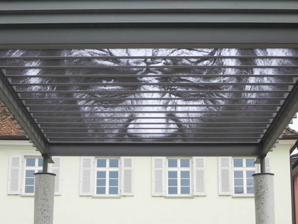 zebrating street art Anamorphic 25