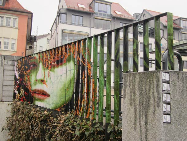 zebrating street art Anamorphic 9