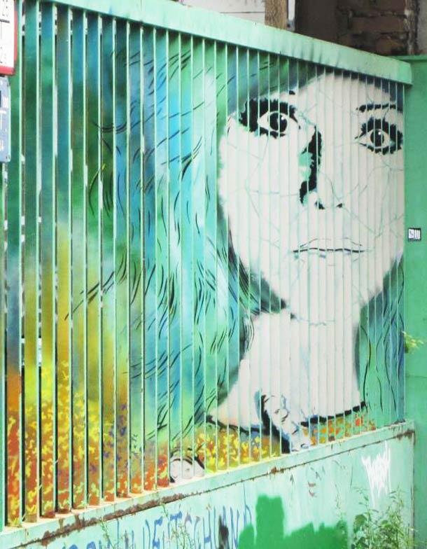 zebrating street art Anamorphic
