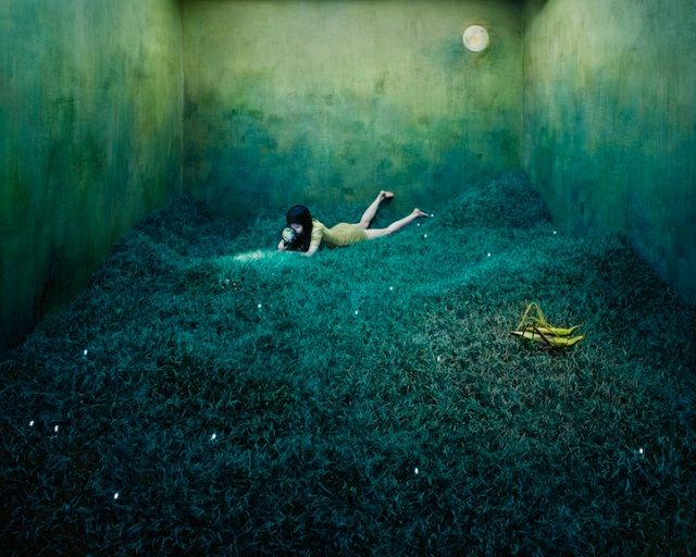 Jee Young Lee Incredible (Non-Photoshopped) Installations 7