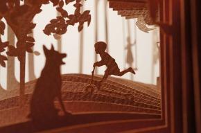 360 degree cut books illustrations 2