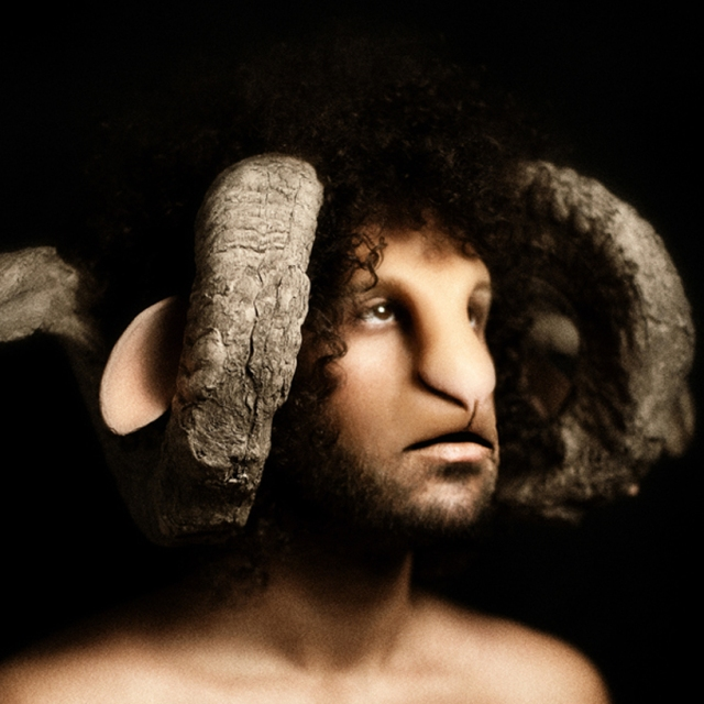 sheep nation Davide Luciano 2