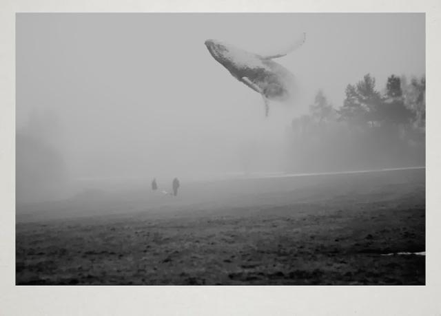 fotografia Martin Vlach 3