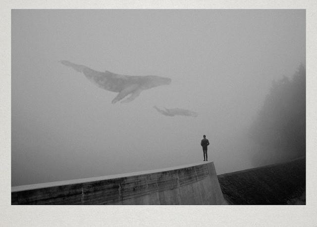 fotografia Martin Vlach 5