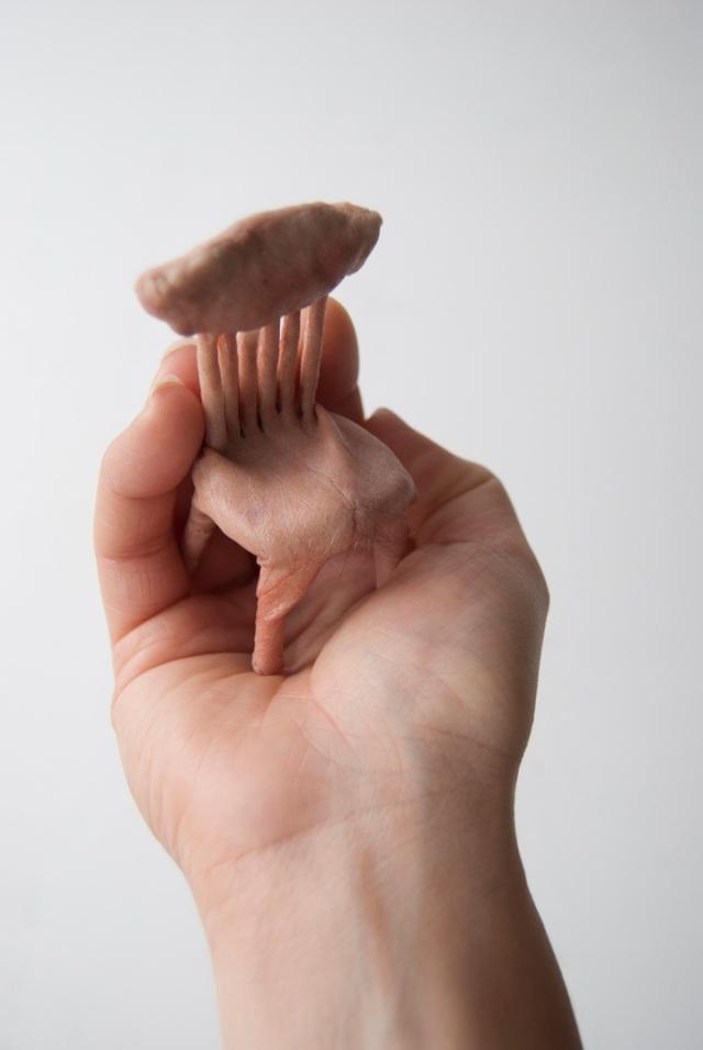 Handheld Organic Sculptures  Jessica Harrison 4