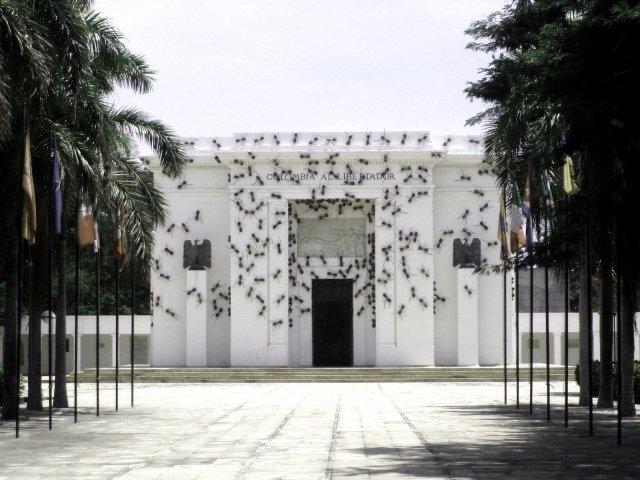 Invasive Ant  Installations Rafael Gómezbarros 8