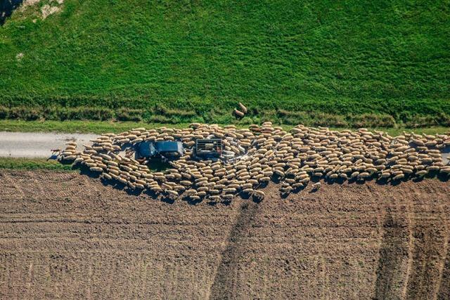 Klaus Leidorf aerial archaeology 3