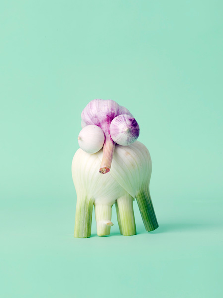 Carl Kleiner CRAZY VEGGIE FACES 6