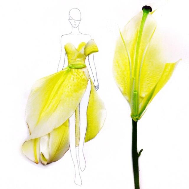 Fashion Illustrations Made Out of Flower Petals Grace Ciao 10