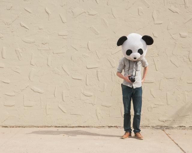 Cody Bratt  Animalia Obscura 5