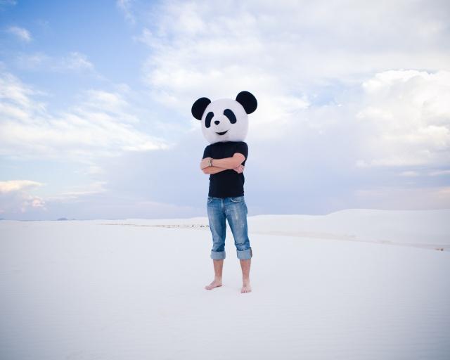 Cody Bratt  Animalia Obscura 7