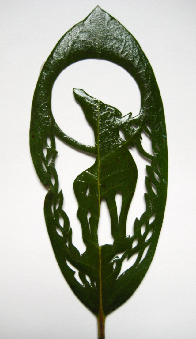 Hillary Fayle carved leaves 8