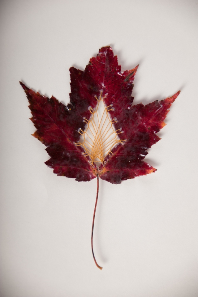 Hillary Fayle stitched leaves 8