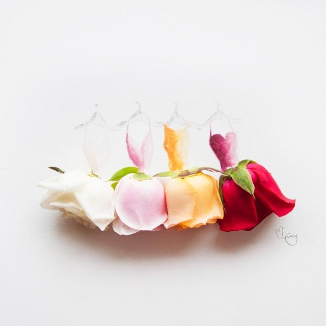 flower illustrations lovelimzy 6