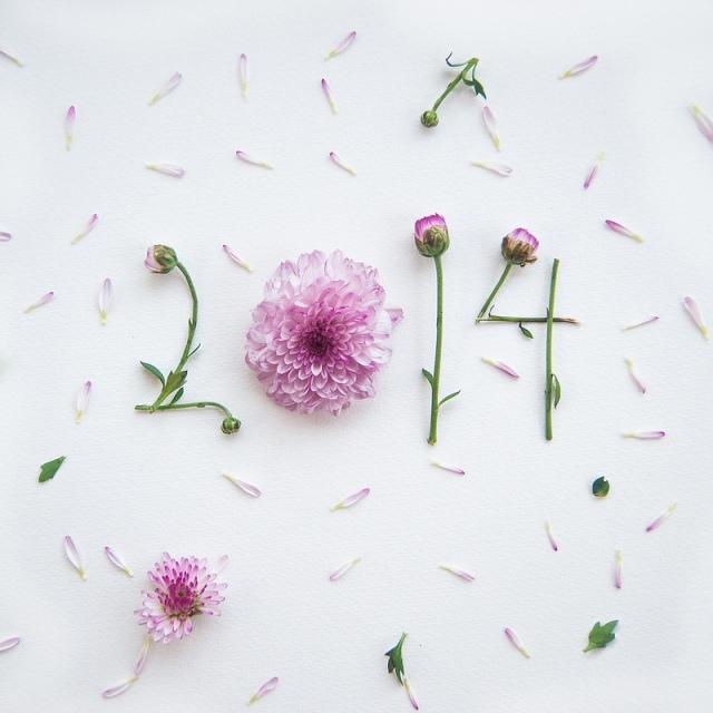 flower illustrations lovelimzy 8