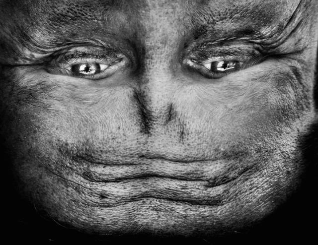 ALIENATION How People Look Turned Upside Down Anelia Loubser