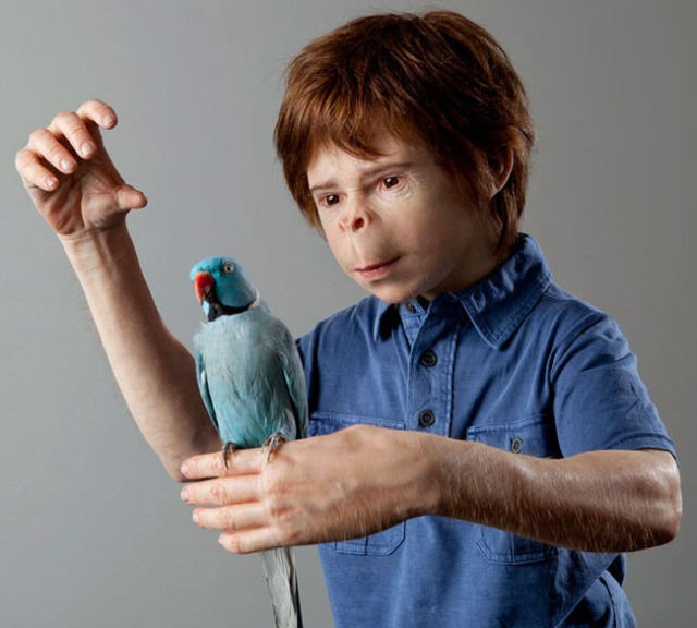 disturbing and hyperrealistic sculptures patricia piccinini 9