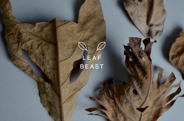 Baku Maeda leaf beast 5