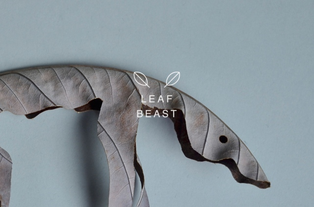 Baku Maeda leaf beast 9
