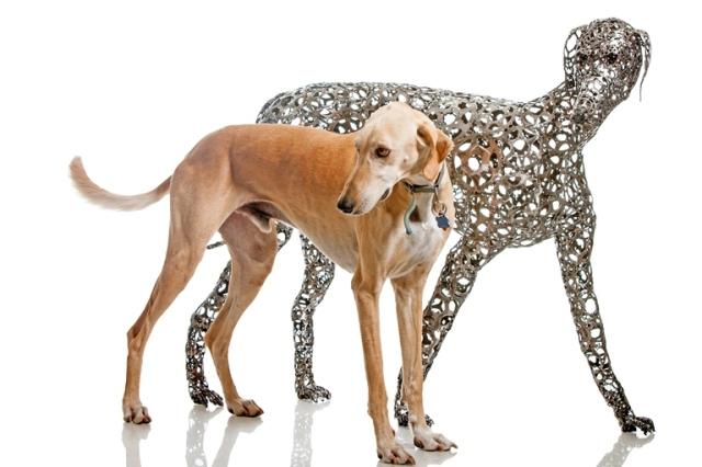 Dog Sculptures Nirit Levav Packer 10