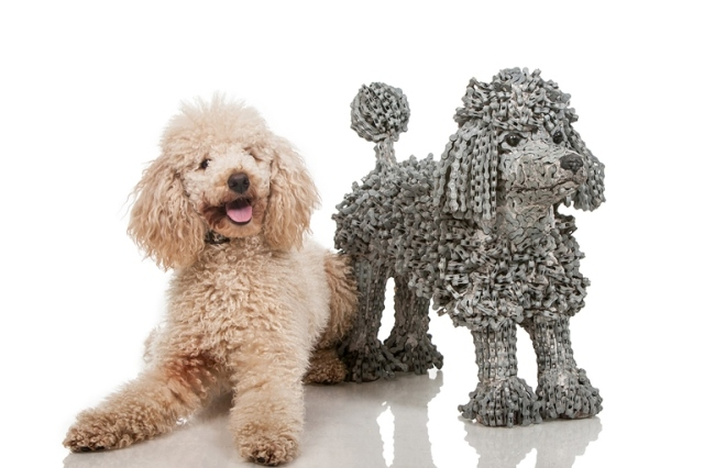 Dog Sculptures Nirit Levav Packer 8
