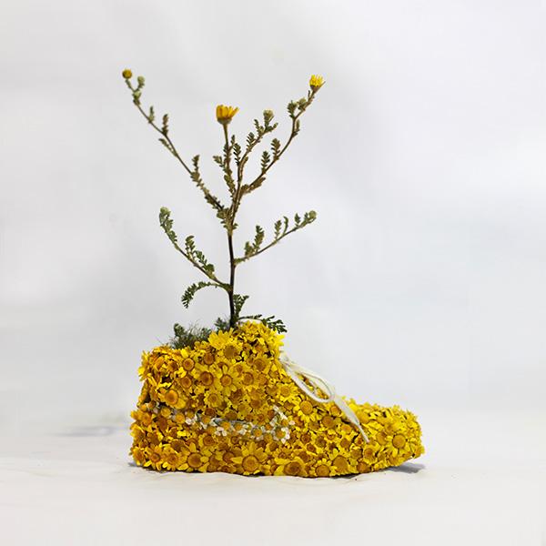 Just Grow It Christophe Guinet  Mr. PLANT 11