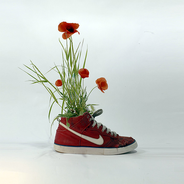 Just Grow It Christophe Guinet  Mr. PLANT 2